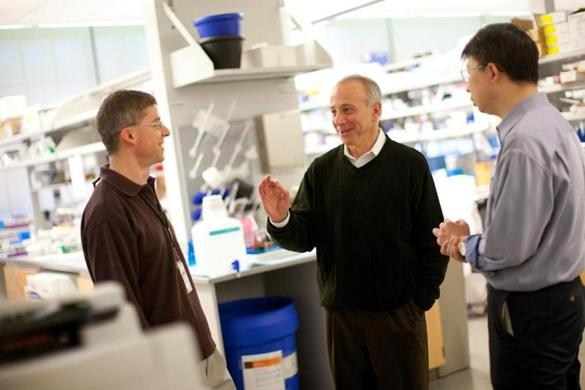 Mark Fishman (right), of Novartis, spoke with researcher Joseph Kelleher in the Novartis labs in Cambridge.