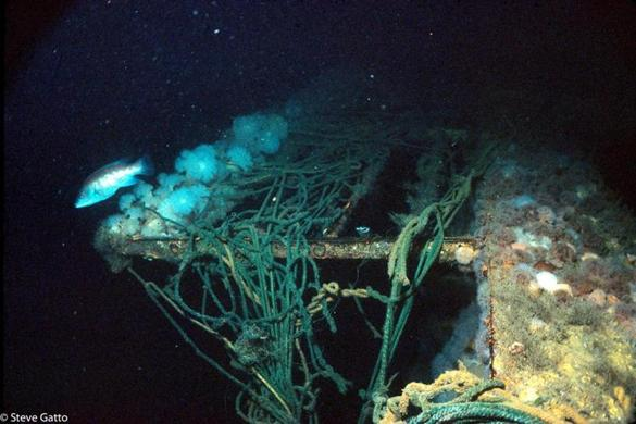 In The Depths The Andrea Doria Claimed Another The