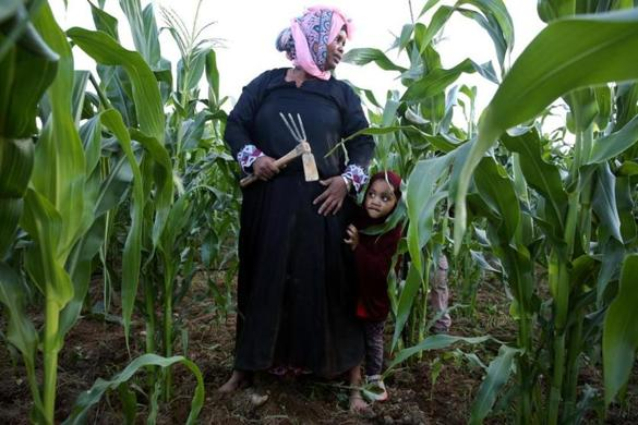 Somali Refugees Find A Farming Oasis In Maine The