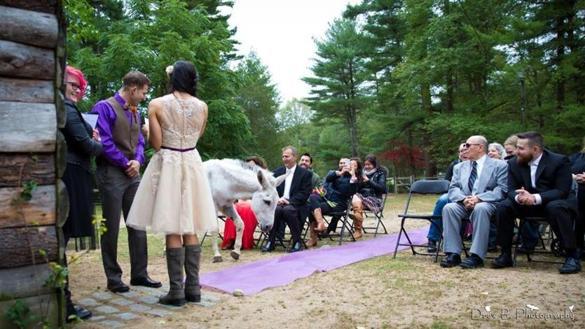 Offbeat Wedding Venues Grow In Popularity