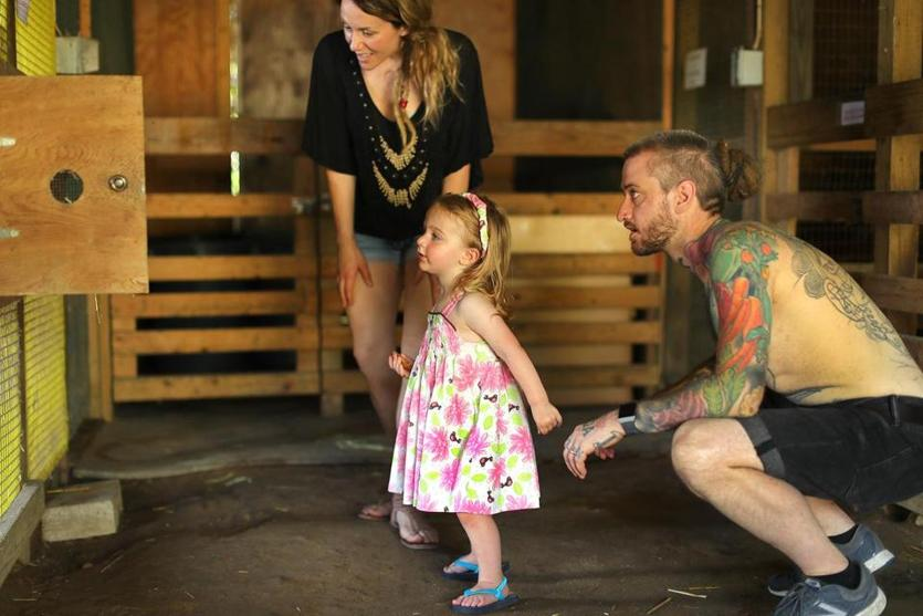 Brandon Baltzley, his wife, Laura Higgins-Baltzley, and their daughter, Faunus, check out a chicken in a coop.