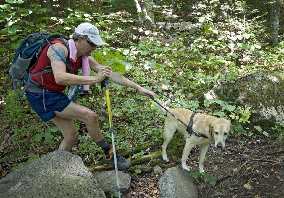 Randy Pierce made his way along the Ethan Pond Trail on the way to the summit of Mt. Willey with some expert guidance from his guide dog, named The Mighty Quinn.