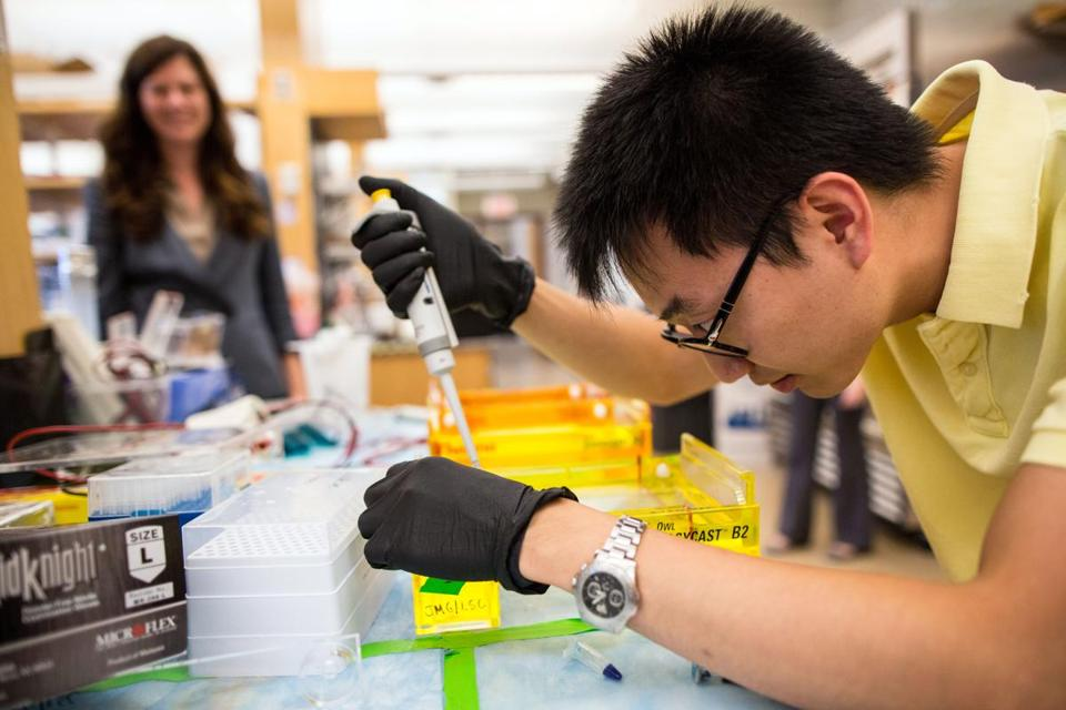Graduate student Alex Ng tested the size of DNA molecules at Harvard Medical School's Churchman Lab.