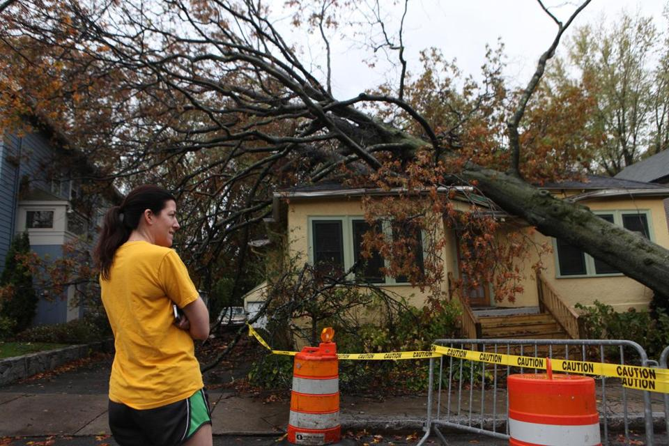 Jenny Brennan looked on after a tree fell on the roof of her home in Cambridge.