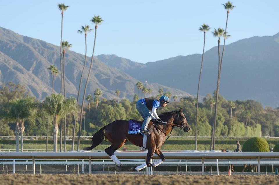 Speak Logistics wasn't heading for the mountains; he was training at Santa Anita.
