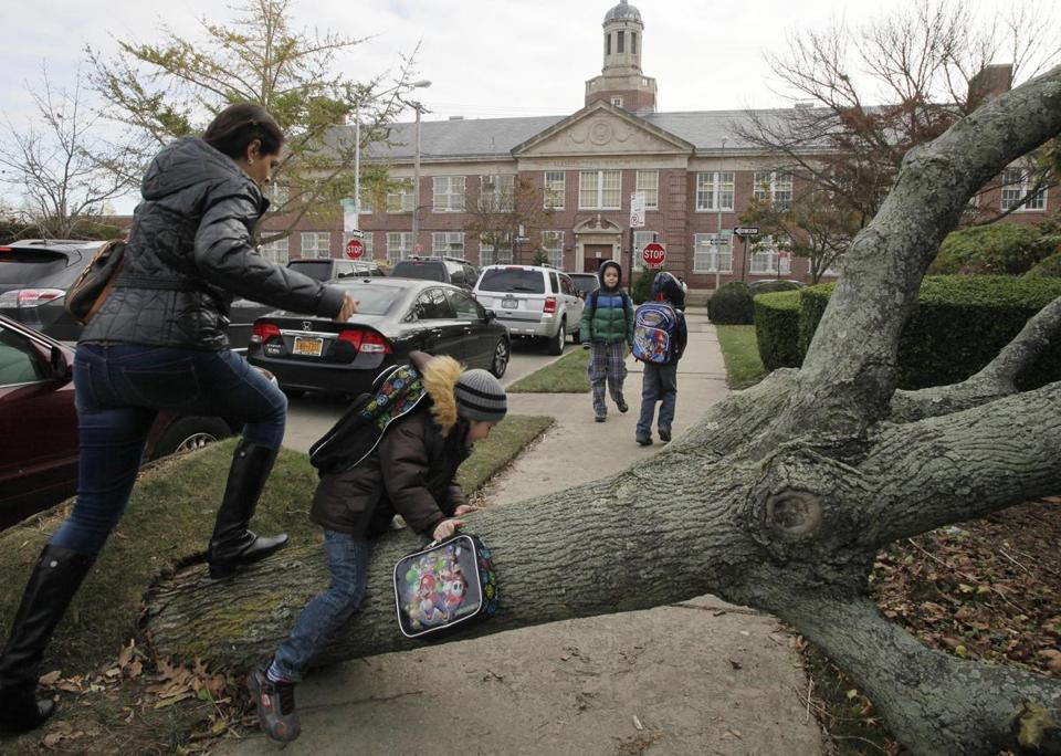 A fallen tree near Public School 195 was only one of the challenges in the Manhattan Beach section of Brooklyn Monday.