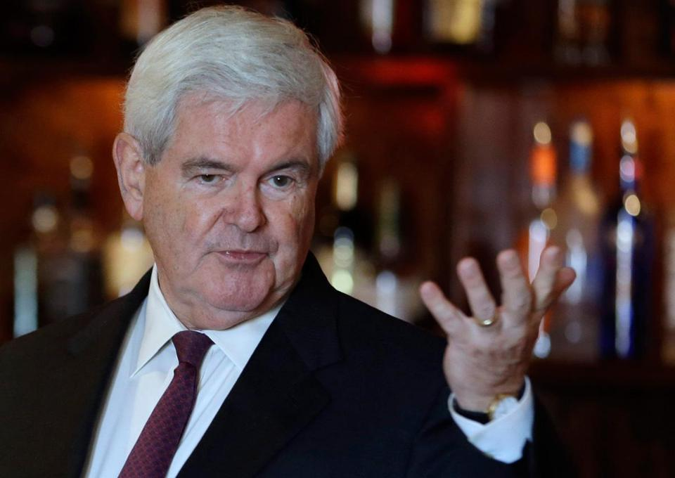 Newt Gingrich says his party must come to terms with the nation's changing views on same-sex marriage.