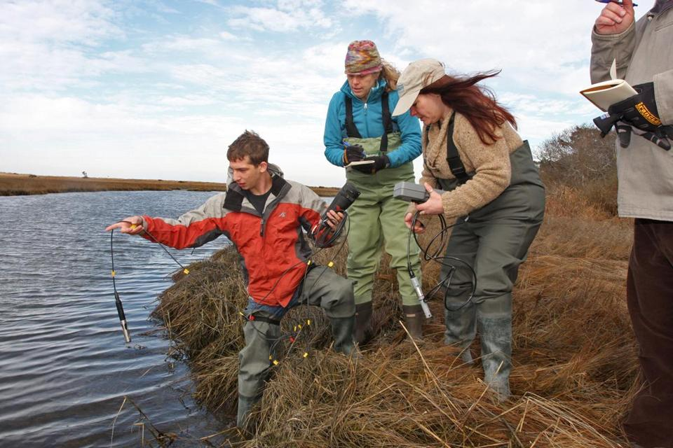 Marine science students Sam Byer (left) and Jo Perkins (center) worked in Nantucket, under the supervision of Sarah Oktay.