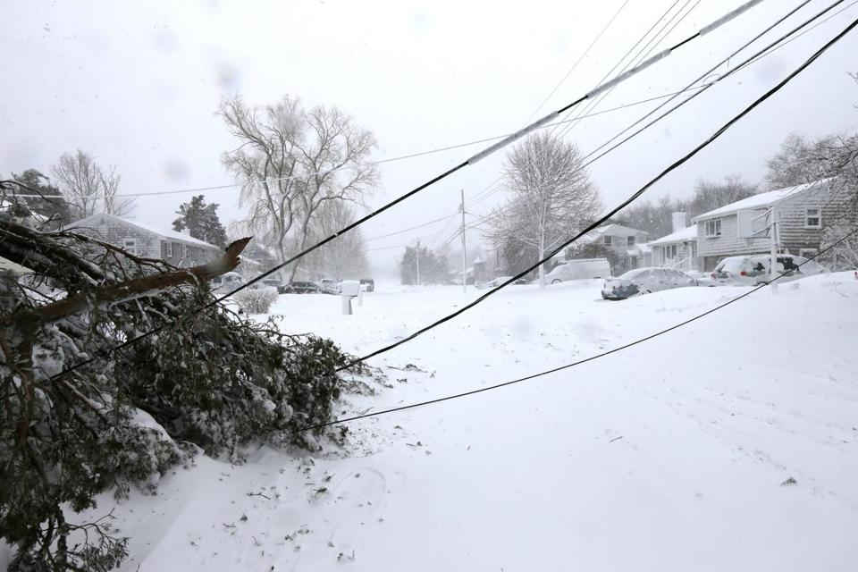 A tree took down power lines in Marshfield, where 93 percent of residents lost power.