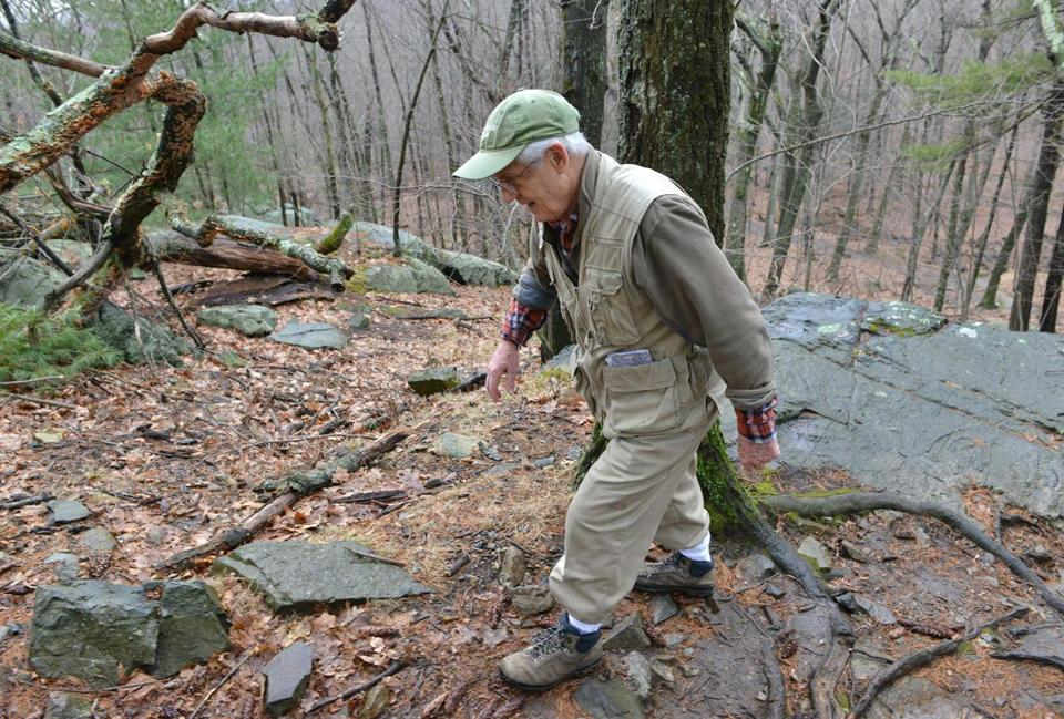 Bryan Hamlin scoured Middlesex Fells for vanished plants.