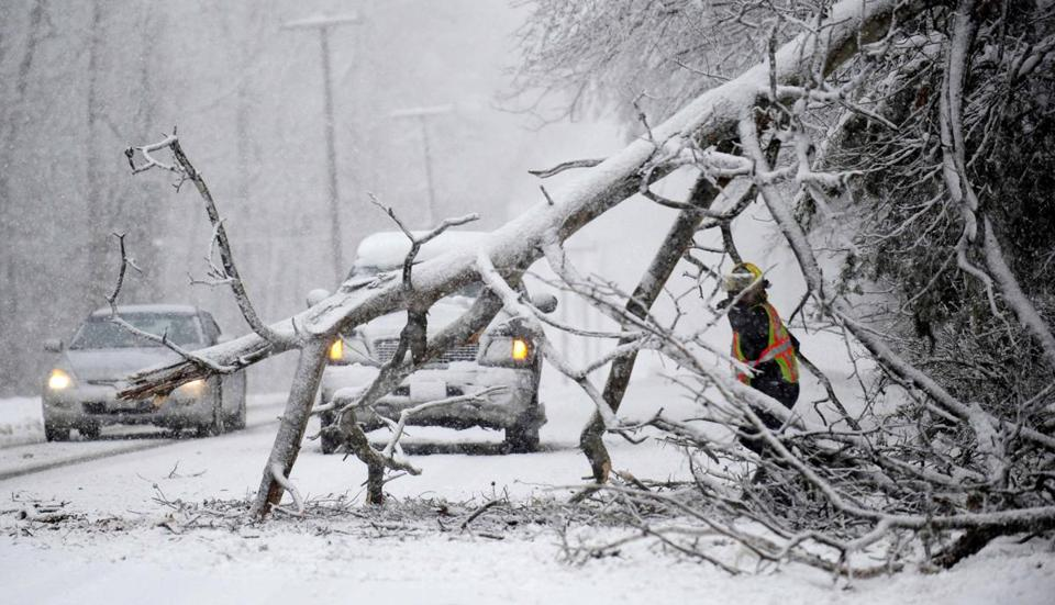 Workers removed a tree in Chancellorsville, Va. The storm was forecast to bring snow and flooding in New England.
