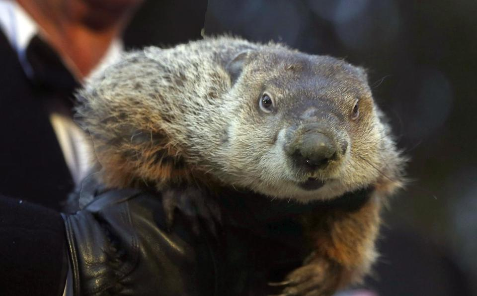 Punxsutawney Phil predicted an early spring from his western Pennsylvania lair.