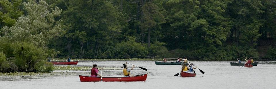 Canoers, having rented from Charles River Canoe and Kayak, paddling on the river.