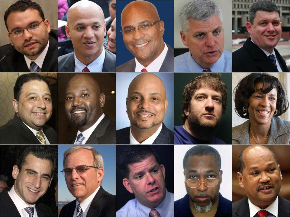 (From left to right) Top row: Felix G. Arroyo, John F. Barros,  Charles L. Clemons Jr., Daniel F. Conley, and John R. Connolly; (Middle row) Rob Consalvo, William J. Dorcena, John G.C. Laing Jr., David S. Portnoy, and Charlotte Golar Richie; (Bottom row) Michael P. Ross, Bill Walczak, Martin J. Walsh,  David James Wyatt,  and Charles C. Yancey.