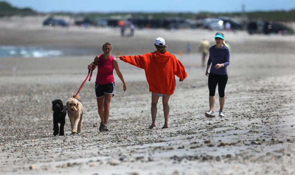 Krista Librett  told dog owner Jessica Hoguet and Karen O'Brien to keep clear of the piping plovers at Duxbury Beach on Thursday. At least 18 nests were seen on the beach as of Thursday evening.