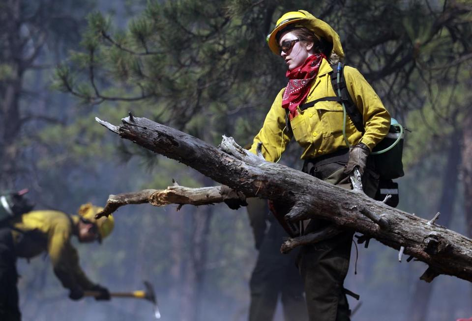 Volunteer firefighter Samantha Marison removed wood on Thursday in the Black Forest fire area.