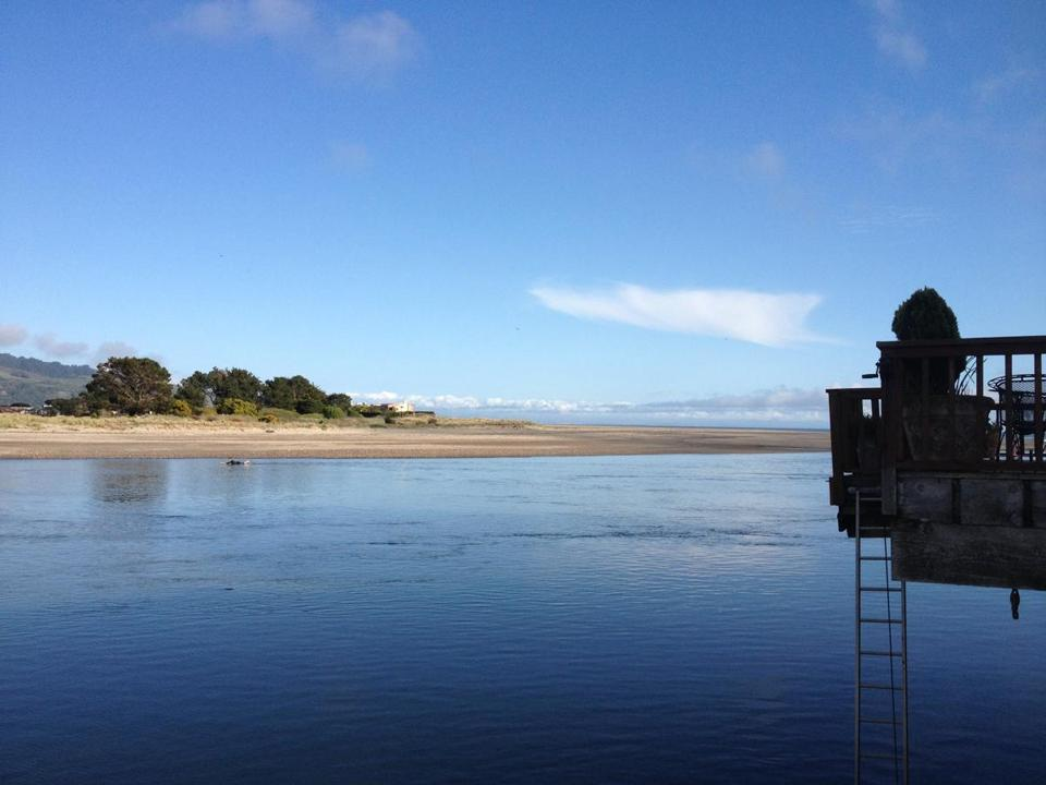 A rental cottage on the Bolinas Lagoon in California has a ladder that can be lowered from a rear deck into the channel.