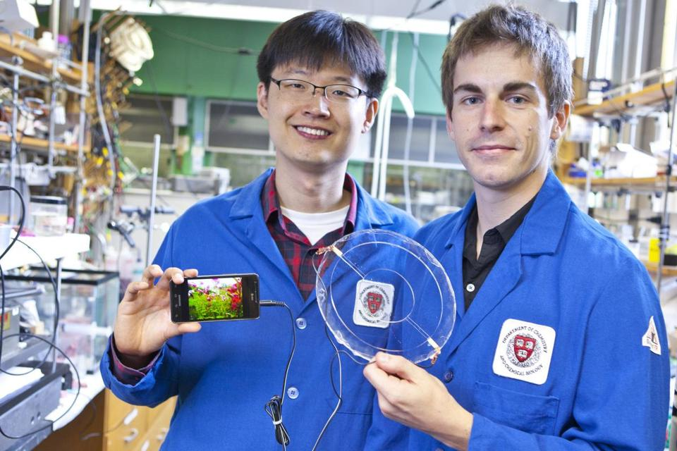 Jeong-Yun Sun (left) and Christoph Keplinger demonstrate their transparent ionic speaker, which uses a signal conducted by ions to vibrate a rubber membrane.