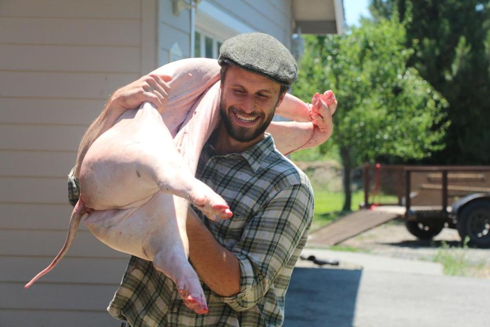 Brandon Sheard with a freshly slaughtered pig at Farmstead Meatsmith on Vashon Island, Wash.