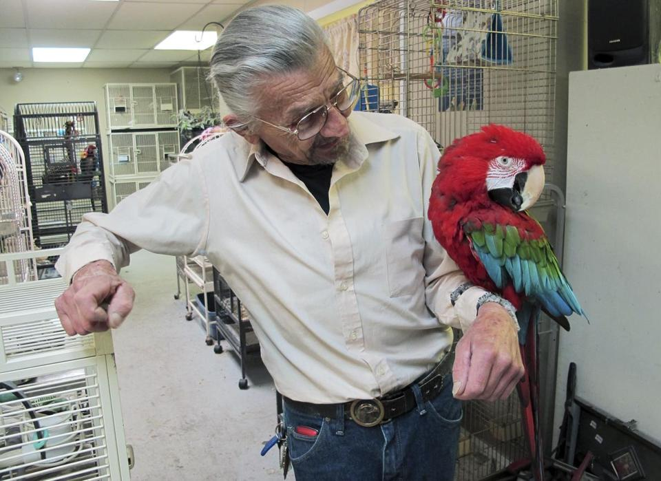 Steve Lazicki held Santina, a 14-year-old macaw, at his Birdhouse and Rescue center in South Kingstown.