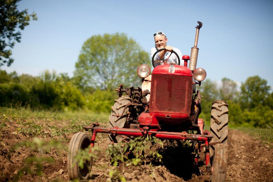 Orange, MA -- Farm School Student Erik Jacobs uses a tractor to cultivate a bed of tomato plants at the Farm School. Photo by Dina Rudick for the Boston Globe
