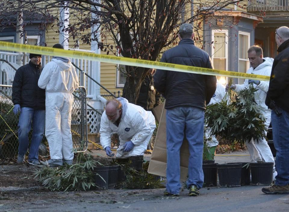 Boston police removed more than 100 cannabis plants, worth $750,000 to $1 million, after a fire in the house.