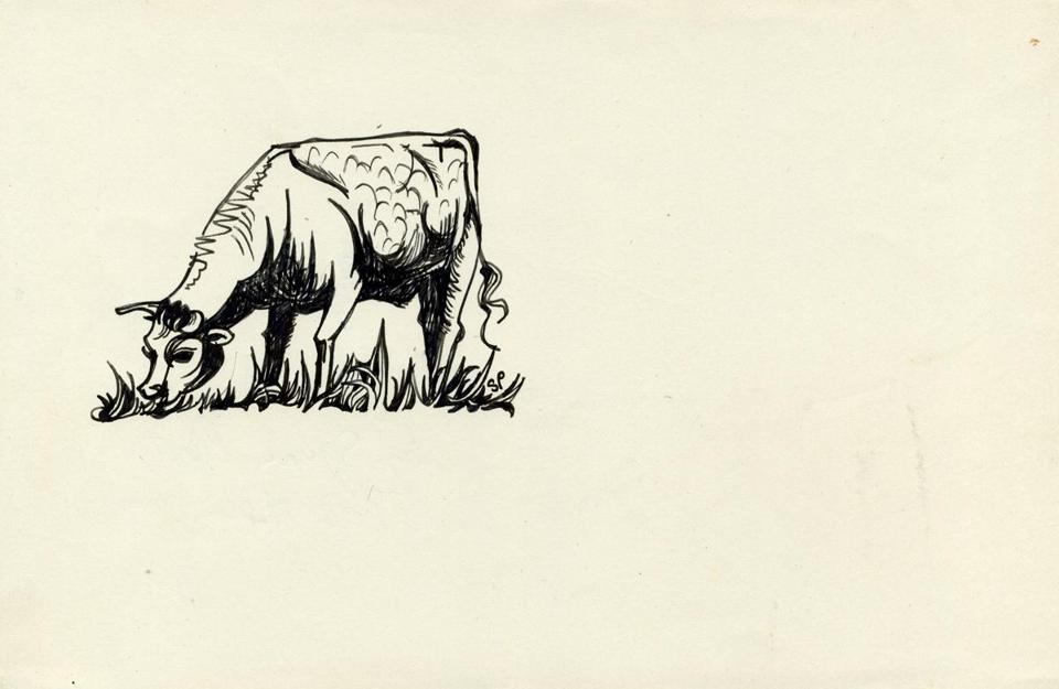 Crossing over: Sylvia Plath's drawings