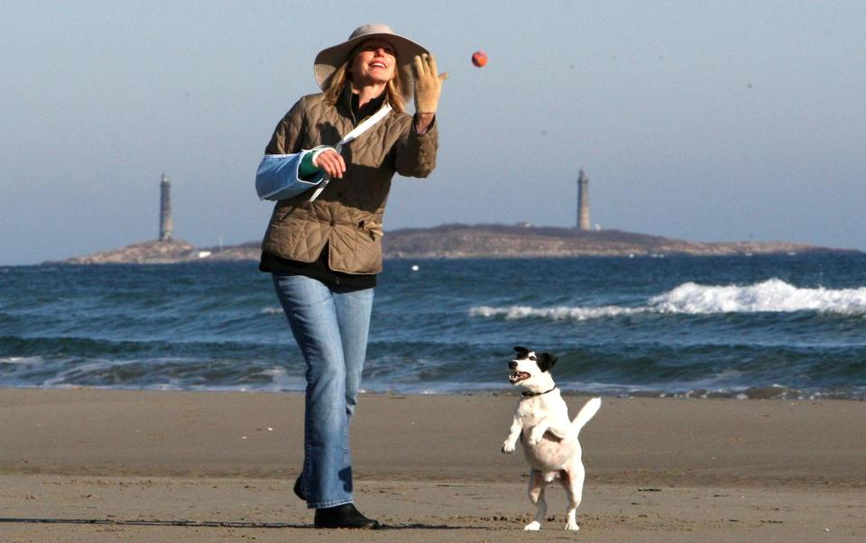 At Gloucester's Good Harbor Beach, Nancy Davis plays with Dash.