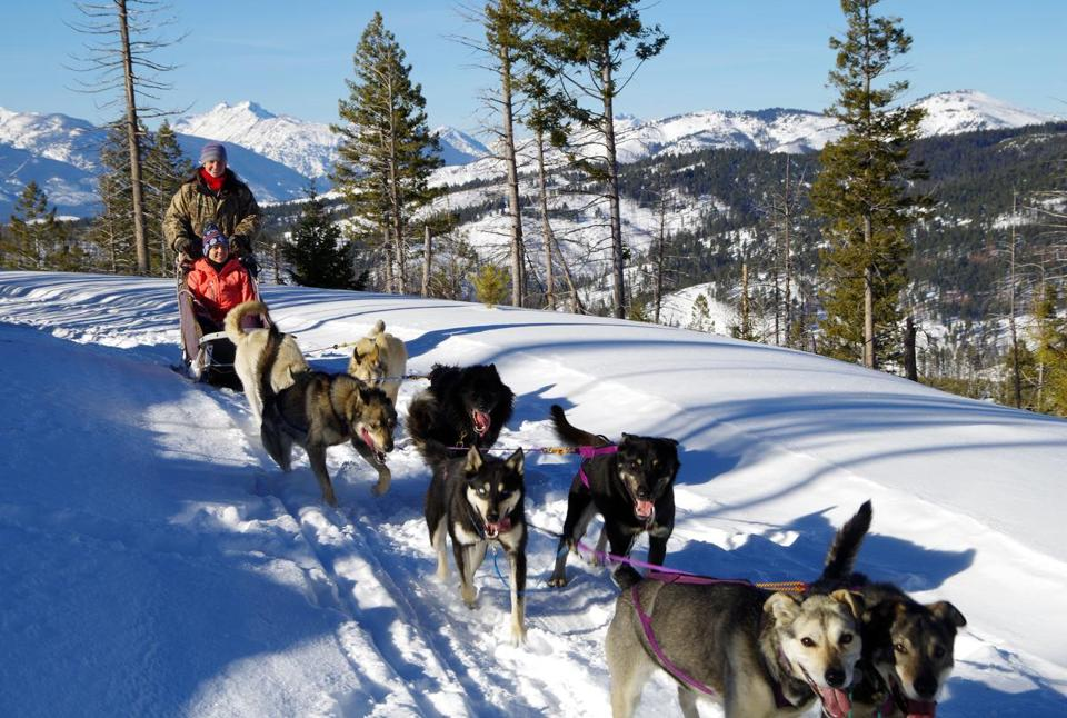 Guests at Triple Creek Ranch near the town of Darby in western Montana can go mushing in the Bitterroot Mountains.
