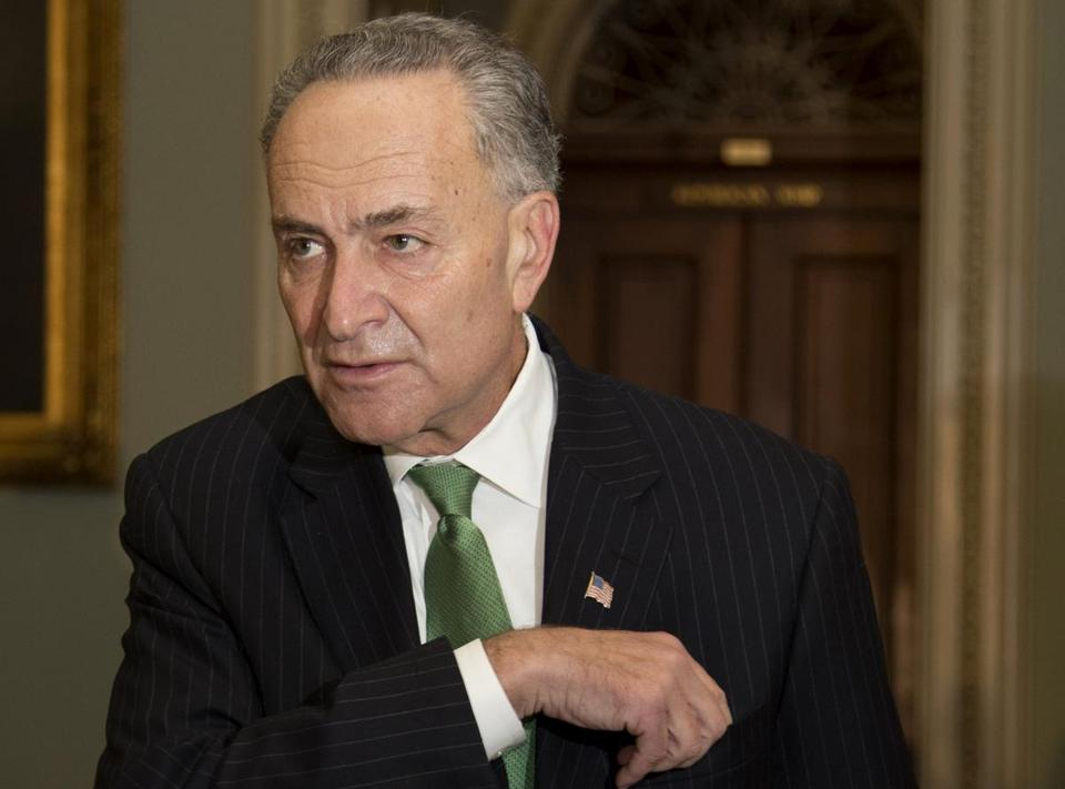 """There is no First Amendment right for gathering information,"" said Senator Chuck Schumer."