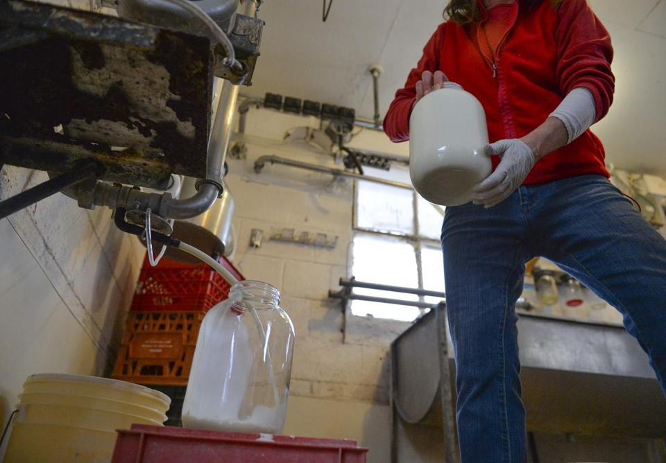 Shannon Triplett switched gallon jugs as raw milk was dispensed at Hedgebrook Farm in Virginia last month. The farm runs a cow-sharing program for those seeking raw milk.