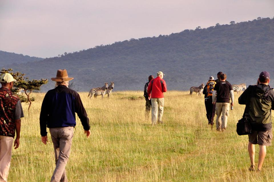 A safari group got a close-up look at some wildlife in the Enashiva preserve.