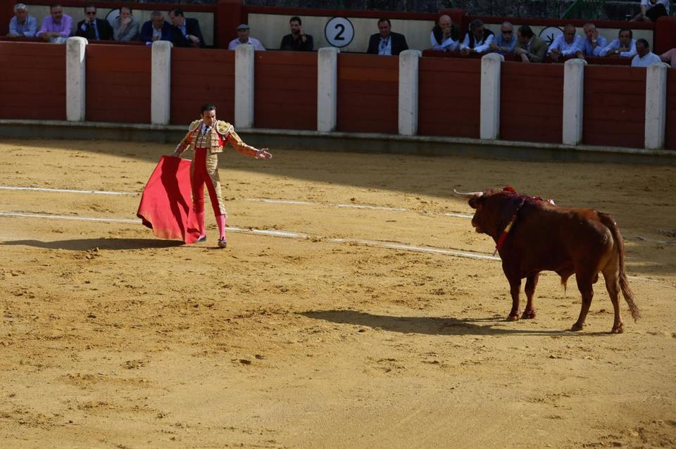 The matador enters the ring: Before the bull is slain, matador Enrique Ponce and the weakened bull face off during the Tercio de Muerte, or Third of Death. It is the final segment of the fight. Ponce has 10 minutes to execute the kill, but first, he must perform for the audience, guiding the bull through circles and charges with his red cape.