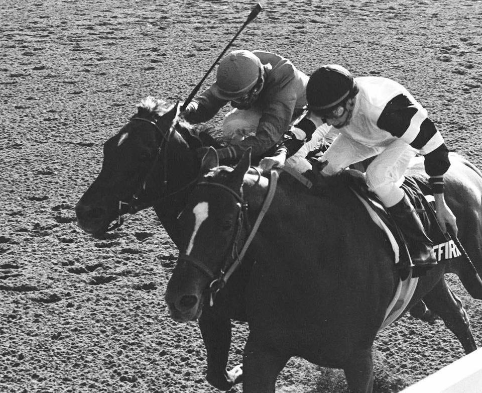 Affirmed's dominance of the classics electrified the nation, his Triple Crown enhanced by the presence of legendary rival Alydar (left).
