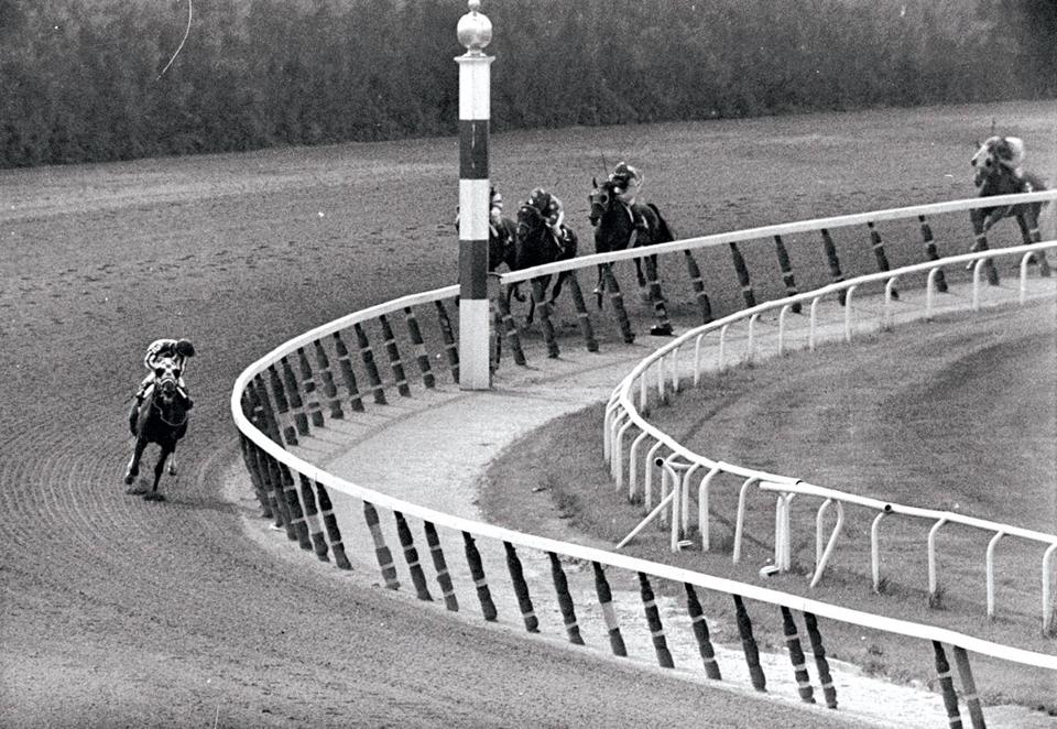 Secretariat took the final turn at Belmont Park, cementing the Triple Crown in 1973.