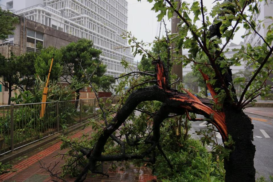 A powerful typhoon pummeled the southern Japanese islands of Okinawa on Tuesday.