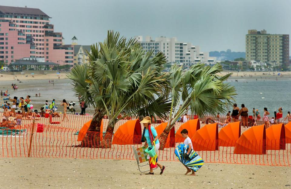 "Live palm tress were planted in the sand of Revere Beach to transform the area into Miami Beach for a scene from the movie ""Black Mass."""