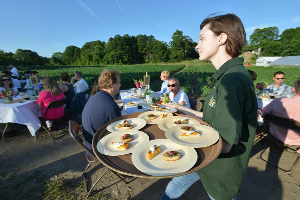Hors d'oeuvres are served to diners next to a corn field at a recent outdoor dinner at Volante Farms in Needham.