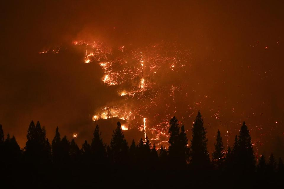 A forest smoldered as the Rim Fire raged near Yosemite Park, Calif., Aug. 24, 2013.