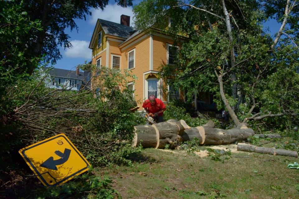 David Berthiaume took a chainsaw to a giant tree that fell onto the house of his friends, Leslie and Patrick Courtney, on Vernon Street in Worcester.