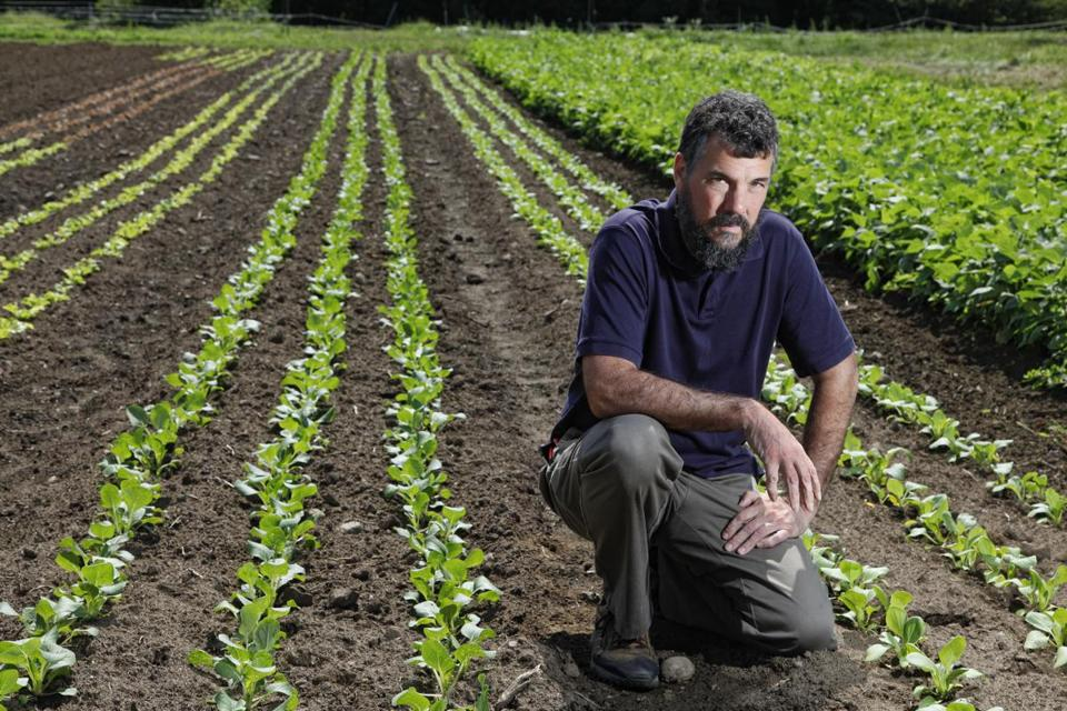 """""""If you know how to do it, the time commitment is not huge,"""" says Brian Donahue of his farming plan."""
