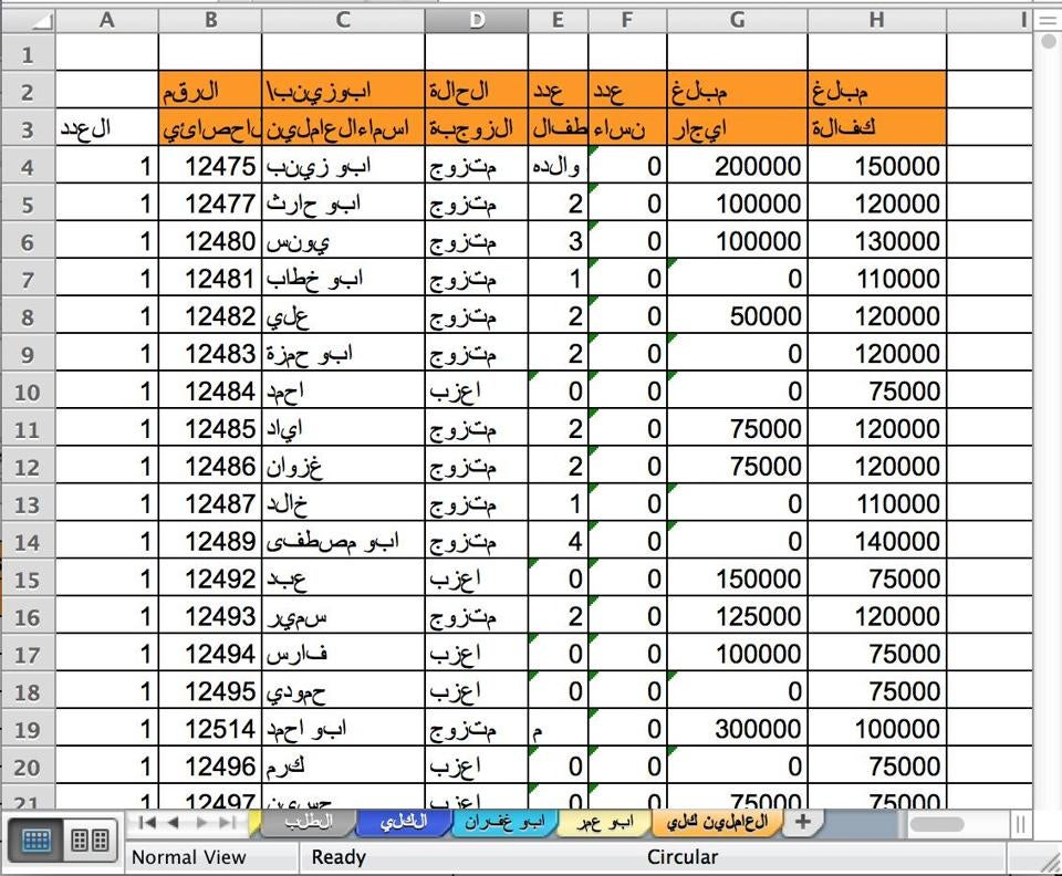 "TERROR WITH AN H.R. DEPARTMENT: An ISI spreadsheet captured in 2008 recorded personnel information for more than 1,000 members. Columns translate roughly as ""Sequence Number,"" ""Name,"" ""Marital Status,"" ""Children,"" ""Women,"" ""Rent Amount"" (extra payments some members got each month), and ""Bail,"" which refers to the monthly salary everyone received."