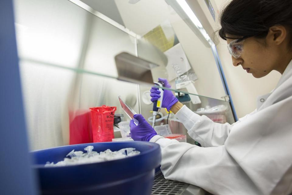 Cambridge, MA 1/28/14 Senior research associate Summar Siddiqui at work at Moderna. Moderna Pharma researchers working on a messenger RNA drug platform, for a story on RNA therapeutics. It holds the promise of revolutionizing the discovery of new medicines by turning genes on and off. (Michele McDonald for the Boston Globe)