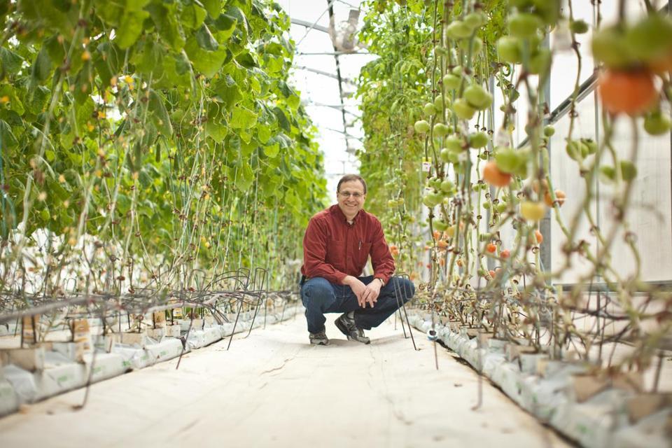 Jeff Barton, cofounder of Water Fresh Farm, in the greenhouse.