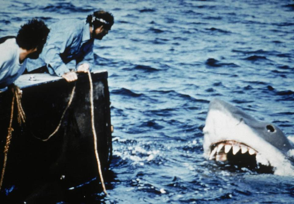 Actors Richard Dreyfuss (L) and Robert Shaw lean off the back of their boat, holding ropes as they watch the giant Great White shark emerge from the water in a still from the film, 'Jaws,' directed by Steven Spielberg. (Photo by Universal Pictures/Courtesy of Getty Images) Library Tag Magazine 07252010