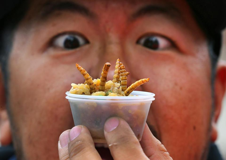 Swarms at 'Pestaurant' eat bug-filled food for charity