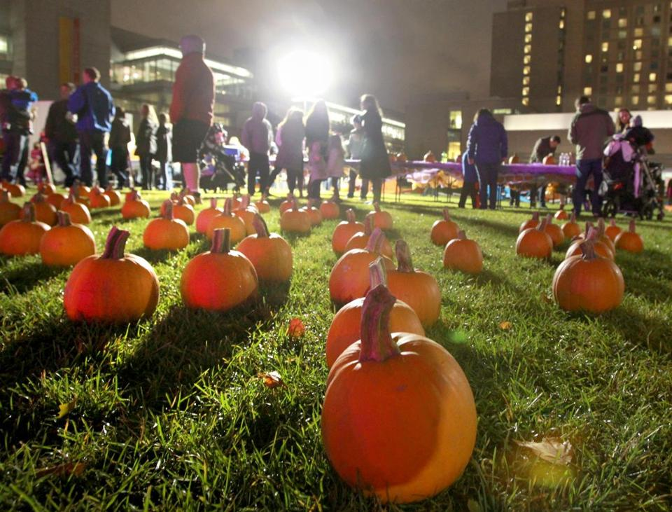 Pumpkins cover the lawn during Punkin' Fest near the Boston Convention & Exhibition Center at the Lawn on D Street, an example of a neighborhood project that contributes to the public realm.