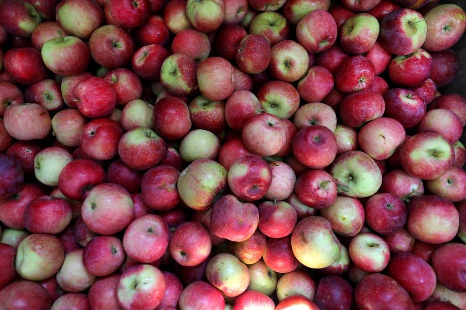 The Tart Flavor Of Apples Gets A Kick From Indian Es In Apple Chutney And Green