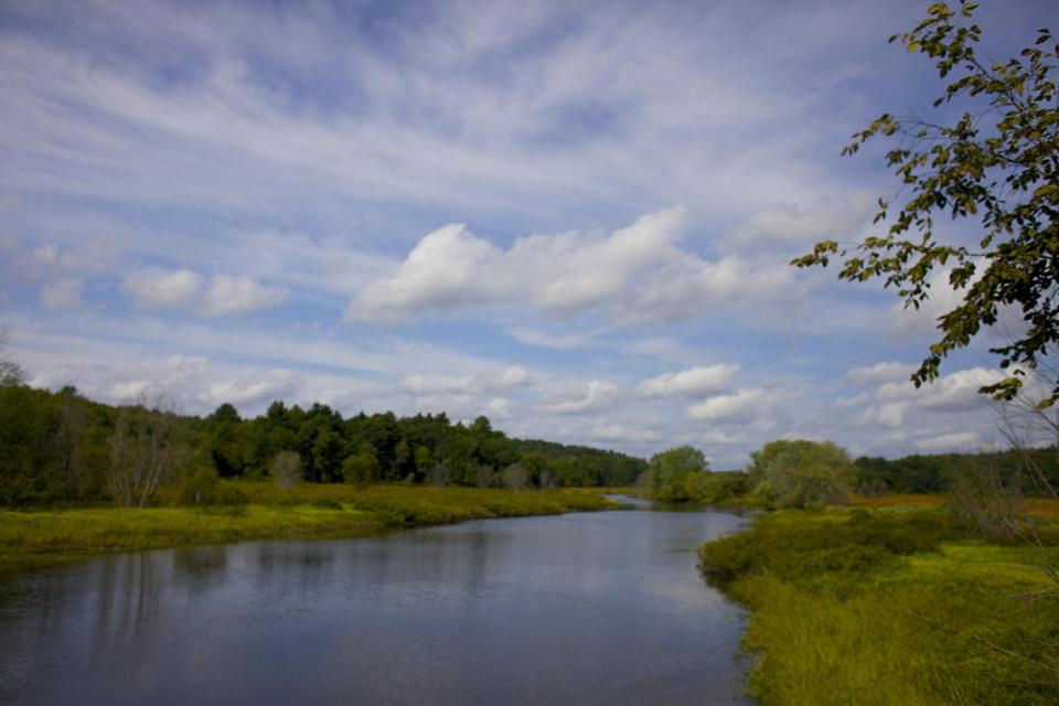 SUDBURY, MASSACHUSETTS -- 09/08/2012 -- A $3.7 million settlement from the Nyanza Chemical Superfund is providing the Sudbury River Watershed area with 11 new projects. Brian Feulner for the Boston Globe