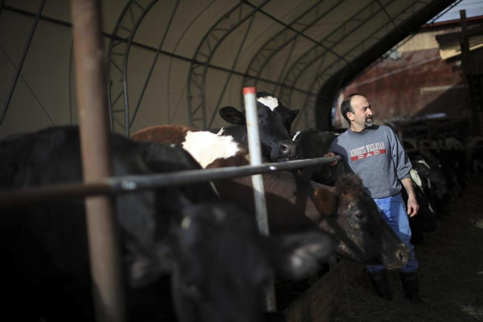 Chris DiBenedetto, who has benefited from a state initiative, used broadband to expand his business online, at his Crystal Valley Farm in Halcott, N.Y.